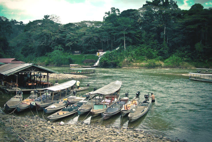 Taman Negara Nature Reserve