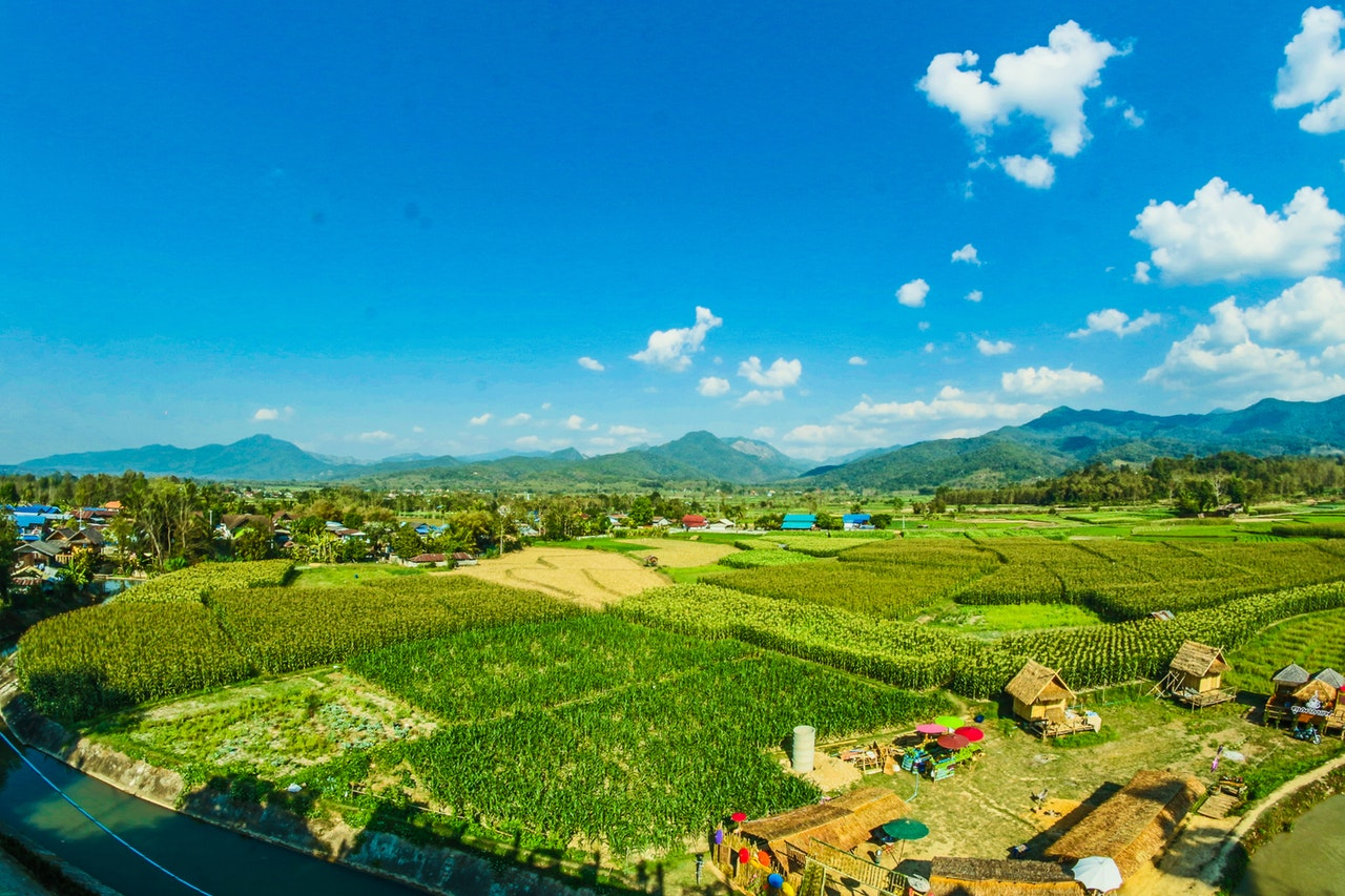 organic farm in southeast asia