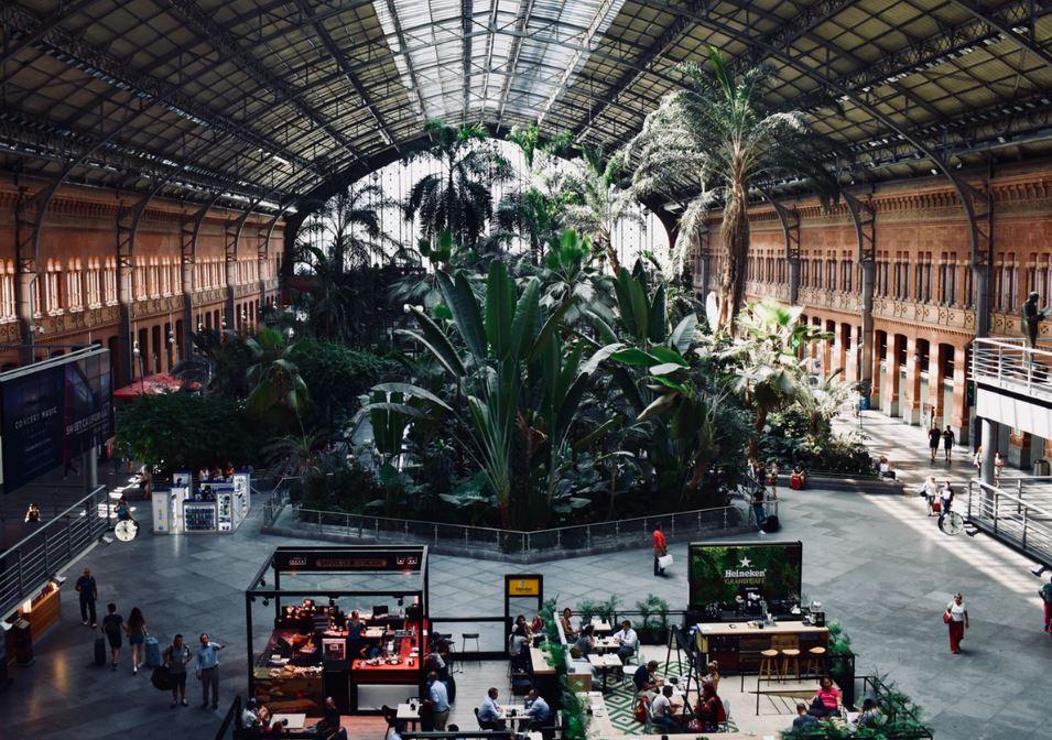Botanical Garden in Madrid Atocha Train Station