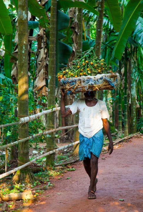 goa india local people